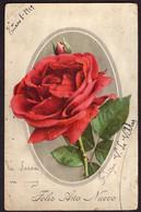 Argentina - Carte Postale - Rose - Circulé - Pas De Timbre-poste - A1RR2 - Flores
