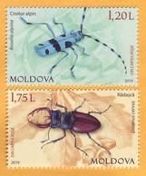 2019 Moldova Moldavie Red Book. Alpine Longhorn Beetle. Stag Beetle Mint - Other