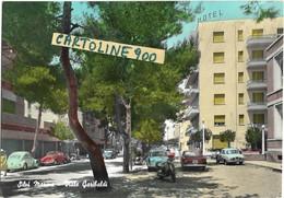 Abruzzo-teramo-silvi Marina Viale Garibaldi Veduta Viale Case Auto Epoca Volkswagen Animata Anni 60 - Italia