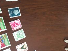 INDIA MONUMENTI  1 VALORE - Postzegels