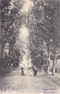 RIS-ORANGIS - Avenue Du Château - Ris Orangis