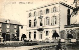 P563 SINT TRUIDEN : Kasteel Van Stayen, Gelopen Kaart - Sint-Truiden