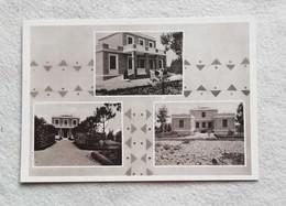 Cartolina Illustrata  Coccolia - Vedute Diverse, Non Viaggiata - Italy