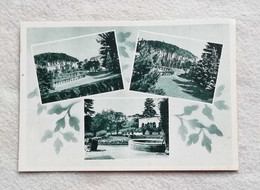 Cartolina Illustrata  Coccolia - Vedute Diverse Interno Villa Conte Della Torre, Non Viaggiata - Italy