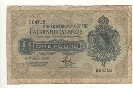 FALKLAND Islands   1 Pound   P8c  Dated 15th June 1982   Queen Elizabeth II - Falkland Islands