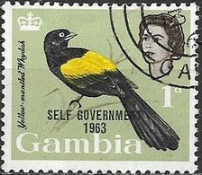 GAMBIA 1963 New Constitution - Birds Overprinted - 1d - Multicoloured FU - Gambia (...-1964)