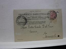 CAMAIORE   -- LUCCA   --- LIVORNO  --   FRANCESCO BARSOTTELLI-- OLIO D'OLIVA - Lucca
