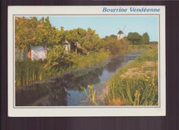 BOURINNE VENDEENNE 85 - Non Classificati