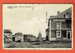 217 P - Vresse-sur-Semois - Sugny Route De Pussemange - Collection D.Preaux A Ghlin - Vresse-sur-Semois