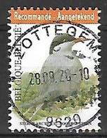 OCB Nr 4306 Fauna Buzin Stern Bird Oiseau Vogel - Used Stamps