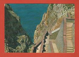ALGHERO (Sassari) Escala Del Cabirol Molto Animata, Viagg.1966 Francobollo Presente, Buone Condizioni Come Da Foto-1101 - Sassari