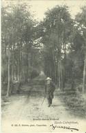 Heide - Calmpthout -- Dreefje Aan - De - Withoef.   (2 Scans) - Kalmthout