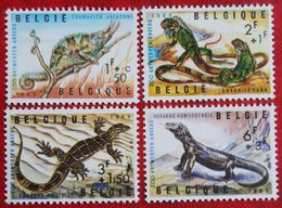 Reptile Lizard Hagedis ZOO Animals  COB N° 1344-1347 (Mi 1401-1404) 1965 POSTFRIS / MNH / **BELGIE / BELGIEN / BELGIUM - Unused Stamps
