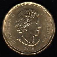 CANADA - 2019 Circulating $1 Coin (*) - Canada