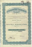 Titre Ancien - Société D'Entreprises Electriques En Pologne - Société Anonyme - Titre De 1929 - Electricity & Gas