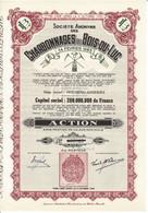 Titre Ancien - Société Anonyme Des Charbonnages Du Bois-du-Luc - Titre De 1948 - Mines