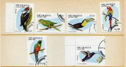 Nicaragua (1981) - Perroquets -   Obliteres - Nicaragua