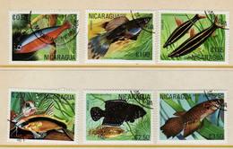 Nicaragua (1981) - Poissons  -   Obliteres - Nicaragua