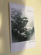 (Q 10 A) China To Australia - 1 Postcard With Stamp - Oblitérés