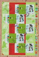 France  2002 =  Bloc N° 49  Oblitéré  Champion Football  (n°3483) - Sheetlets