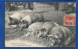 Cochon Une Famille Bien Nourrie        Animées      écrite En 1910 - Unclassified