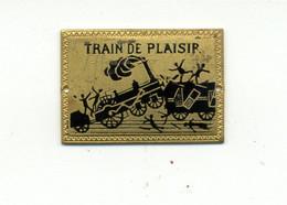 Médaille Ou Décoration émaillée (?) Train De Plaisir / (fin XIXème - Début XXème) - Railway