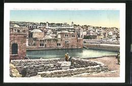 AK Hebron, Avec L'étang De Sarah - Palästina