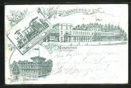 Lithographie Neuwied, Schloss Monrepos, Segenhaus, Forsthaus - Chasse