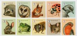 Belgium - 2020 - Garden Visitors - Mint Self-adhesive Stamp Set - Ungebraucht