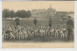 CHASSE A COURRE - CHANTILLY - Promenade De La Meute - Chasse