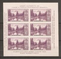 1934. USA. Philatelic Exhibition In Atlantic City . Block  * - Unused Stamps