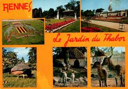 CPM - RENNES - Jardin Du THABOR (Multivues) - Edition La Cigogne - Other