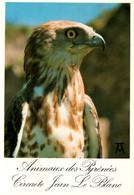 CPM - BEAUCENS - DONJON DES AIGLES - CIRCAETE JEAN LE BLANC - Edition Artpyr - Birds