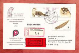 U 7 Fischotter, Zudruck Philatelia, Einschreiben Reco Expres, Wermsdorf Nach Koeln 1987 (97865) - Sobres - Usados