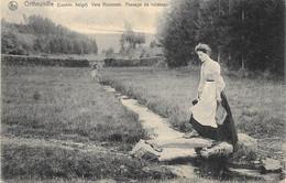 Ortheuville NA1: Vers Roumont. Passage De Ruisseau 1908 - Tenneville