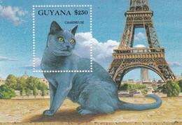 Guyana Hb 98 - Guyana (1966-...)