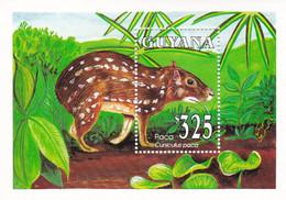 Guyana Hb 117 - Guyana (1966-...)