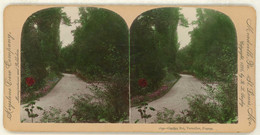 France ~ VERSAILLES ~ Garden Roi In 1895 Tinted Stereoview 1692 21768 - Stereo-Photographie