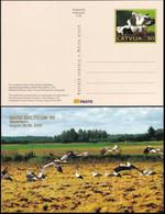 LETTLAND 2005 Postkarte - Postcard Mare Balticum '05 Ungelaufen - Lettonie