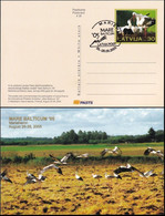 LETTLAND 2005 Postkarte - Postcard Mare Balticum '05 Gestempelt - Lettonie