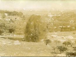 Avignon La Grande Mine 1899  Format 11 X 8 - Photos