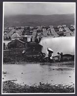 PALESTINIAN REFUGEES CAMP PRESS PHOTO (not Postcard) Size 18 X 22 Cm East Jordan Palestine Arab 1970 - Palästina