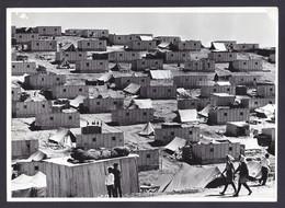 PALESTINIAN REFUGEES CAMP PRESS PHOTO (not Postcard) Size 17 X 24 Cm East Jordan Palestine Arab - Palästina