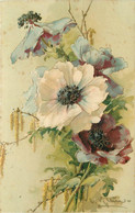 KLEIN Catharina (illustrateur) - Fleurs Anémones. - Klein, Catharina