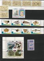 QATAR 12 Years ( 1995-2006 Y.y.)  Annual Sets. - Qatar
