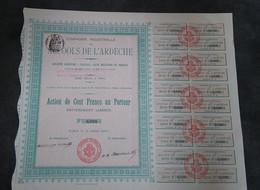 ACTION DE 100 F - COMPAGNIE INDUSTRIELLE DES ALCOOLS DE L'ARDECHE -1905 - Industrie