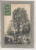CPA - (01) ECHALLON - Thème: ARBRE - Aspect Du Gros Chêne Derrière L'Hôtel Bret En 1912 - Frankreich