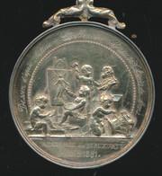 MONS - ZILVEREN MEDAILLE 1881 - DESSIN D'APES NATURE ECCELLENCE GREUSE LOUIS DE MONS ACADEMIE DE BEAUX ARTS MONS 1881 - Altri