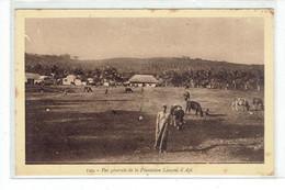CPA NOUVELLES HEBRIDES - 129. VUE GENERALE DE LA PLANTATION LANCON, A API - Vanuatu