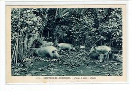 CPA NOUVELLES HEBRIDES - 111. POCAS A DENTS - OUALA - Vanuatu